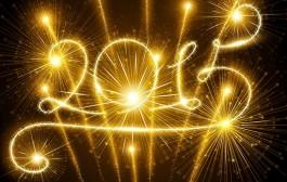 Levantamento de 2014 e Planos para 2015! ;)