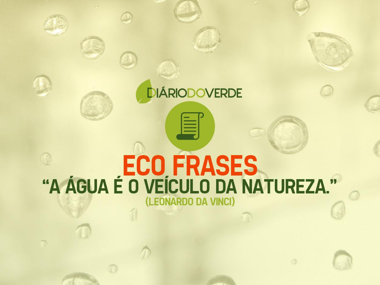 Eco Frases Diário Do Verde